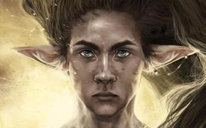 Picture look, hair, elf, guy, ears