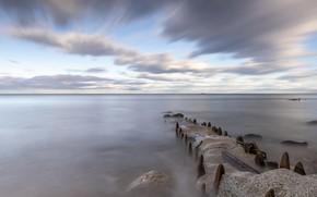 Picture sea, nature, shore