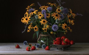 Picture bouquet, strawberry, Echinacea