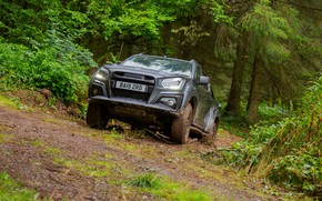 Picture pickup, in the woods, Isuzu, D-Max, 2019, UK version, XTR
