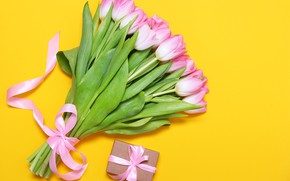 Picture yellow, background, bouquet, tape, tulips