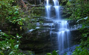 Picture Rock, Waterfall, Forest