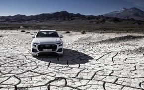 Picture Quattro, 2018, crossover, 55 TFSI, Audi Q8
