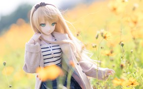 Picture flowers, doll, coat