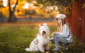 Picture autumn, light, mood, the fence, dog, friendship, girl, white, friends, tails