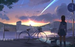 Picture road, bike, puppy, schoolgirl, sunset, road sign, sailor, from the back, shooting stars, by Sun …