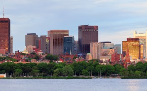 Picture trees, shore, building, home, yachts, panorama, Bay, USA, Boston