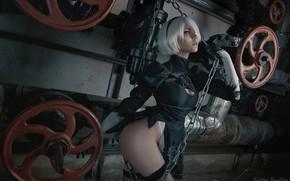 Picture girl, cosplay, Kristina Borodkina, NIER Automata