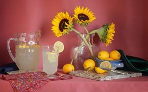 Picture background, still life, citrus
