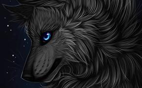Picture profile, myarukawolf, by myarukawolf, black wolf