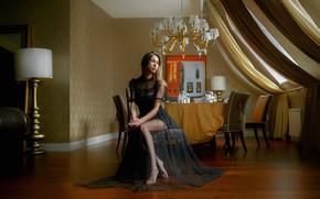 Picture look, girl, pose, room, dress, Olga, Andrey Metelkov