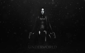 Picture Eyes, Weapons, Another world, Underworld, Art, The film, Vampire, Guns, Celine, Selene, StarkitecktDesigns, by StarkitecktDesigns