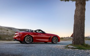 Picture red, tree, BMW, Roadster, BMW Z4, M40i, Z4, 2019, UK version, G29
