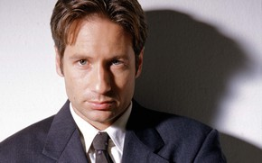 Picture the series, The X-Files, Classified material, ДэвидДуховны, ФоксМалдер