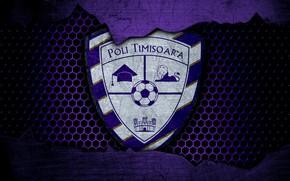 Picture wallpaper, sport, logo, football, Hand.