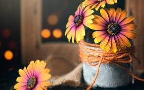 Picture flowers, Board, frame, fabric, pot, burlap, rope, bokeh