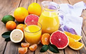 Picture orange, juice, citrus, grapefruit, tangerines