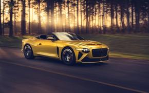 Picture Bentley, Mulliner, 2020, Bacalar