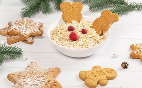 Picture branches, tree, cookies, plate, New year, Christmas, cakes, New Year, muesli
