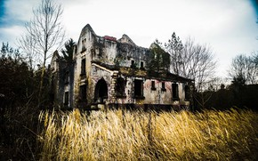 Picture field, house, ruins