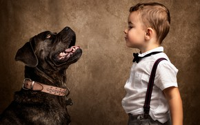 Picture face, background, dog, boy, collar, braces