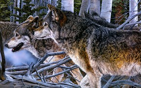 Picture forest, look, figure, pack, picture, art, wolves, profile, painting, muzzle, Judy Larson