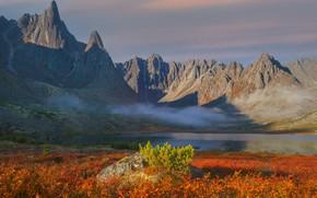 Picture landscape, mountains, nature, fog, Vladimir Ryabkov, the lake of Jack London