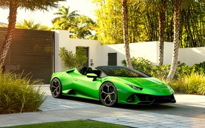 Picture machine, palm trees, Lamborghini, sports car, Spyder, Evo, Huracan