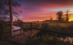 Picture landscape, nature, fog, tree, dawn, field, morning, the bridge, meadows, river, Tomczak Michael, Jeziorka river