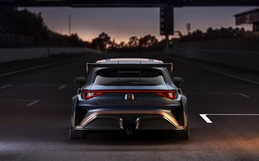 Picture the evening, rear view, Leon, Competition, Seat, Cupra, 2020