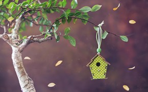 Picture tree, house, Bird house