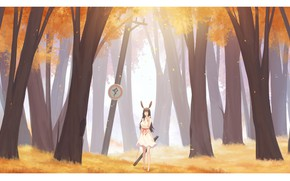 Picture autumn, forest, girl, ears