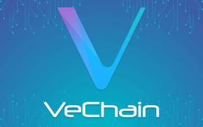 Picture logo, logo, turquoise, fon, vechain, vet