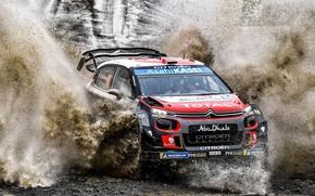 Picture Water, Auto, Machine, Race, Citroen, Citroen, Squirt, Car, WRC, Rally, Rally, The front, Citroen С3, …