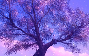 Picture girl, twilight, sitting tree