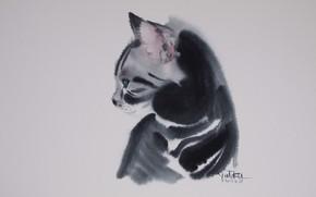 Picture watercolor, grey background, art, tabby cat, Tabelkami Win In Mura
