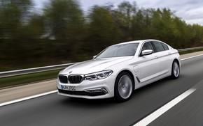 Picture white, asphalt, trees, BMW, sedan, hybrid, 5, four-door, 2017, 5-series, G30, 530e iPerformance