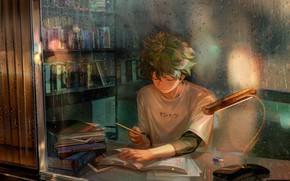Picture guy, My Hero Academia, Boku No Hero Academy, Midori Isuku, My Hero Academy