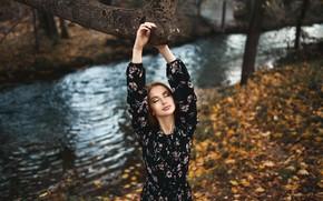 Picture autumn, leaves, girl, nature, face, pose, river, tree, model, bokeh, Nikolay Novikov