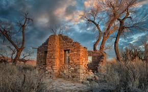 Picture United States, Utah, abandoned house, Cottonwood Trees, Hanksville