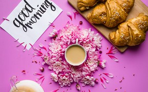 Picture flowers, coffee, Breakfast, petals, chrysanthemum, pink, flowers, cup, coffee, good morning, croissants, growing, breakfast, petals
