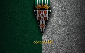 Picture wallpaper, sport, logo, football, La Liga, Cordoba