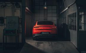 Picture Porsche, rear view, Coupe, Turbo, Cayenne, 2019