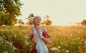 Picture field, girl, nature, pose, dress, neckline, gloves, shoulders, Alexander Grankin