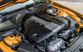 Picture engine, Ford, 2018, fastback, Mustang GT 5.0