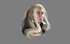Picture elf, fantasy, The hobbit, Thranduil, by elbenherzart