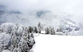 Picture winter, mountains, Carpathians, the cabin in the mountains