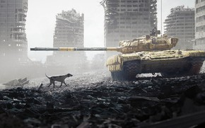 Picture dog, the ruins, Tank, DOFRESH, A dog's life