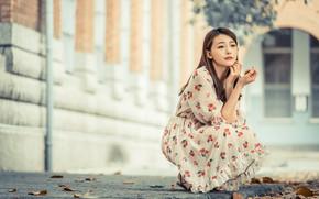 Picture girl, dress, Asian, sitting, cutie, bokeh