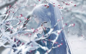 Picture girl, snow, flowers, branches, Honkai Impact 3
